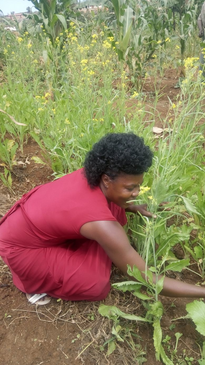 Irene Nyamua
